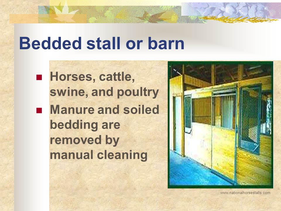 Bedded stall or barn Horses, cattle, swine, and poultry Manure and soiled bedding are removed by manual cleaning www.nationalhorsestalls.com