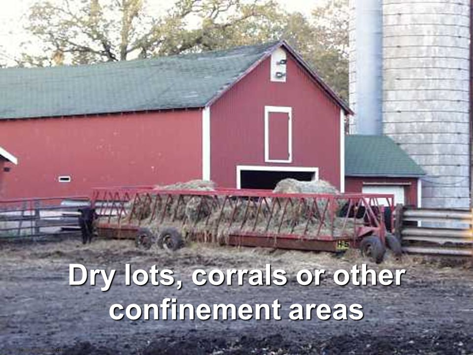 www.farmphoto.com Dry lots, corrals or other confinement areas