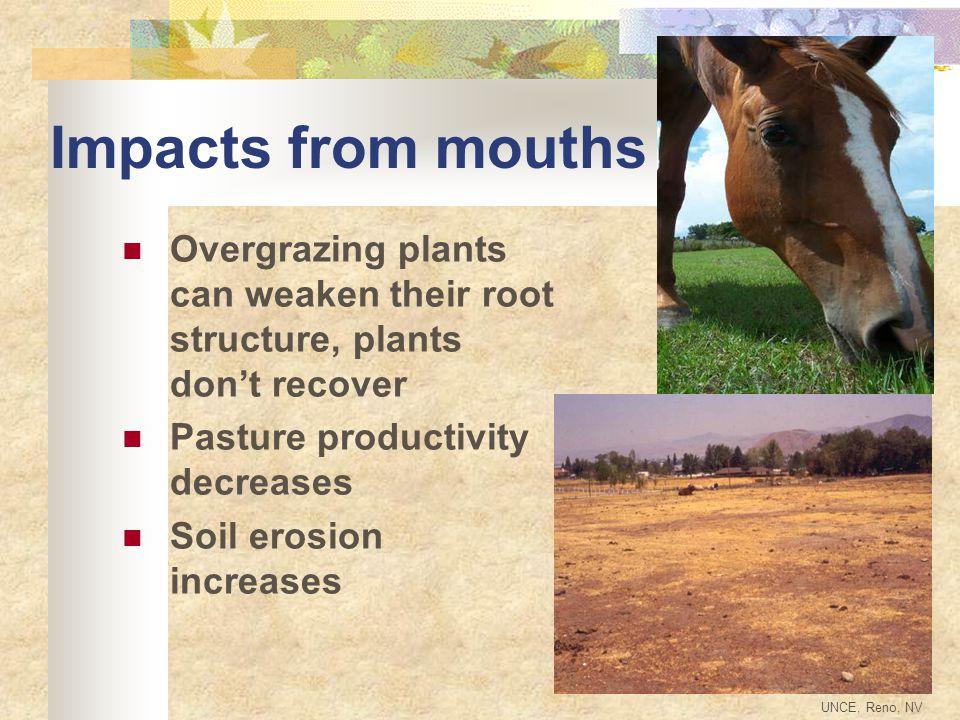 Composting Reduces volume Kills parasites Reduces weed seeds Reduces odor Provides slow release fertilizer Provides soil amendment