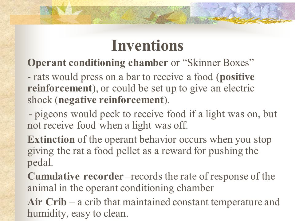 Inventions Operant conditioning chamber or Skinner Boxes - rats would press on a bar to receive a food (positive reinforcement), or could be set up to give an electric shock (negative reinforcement).
