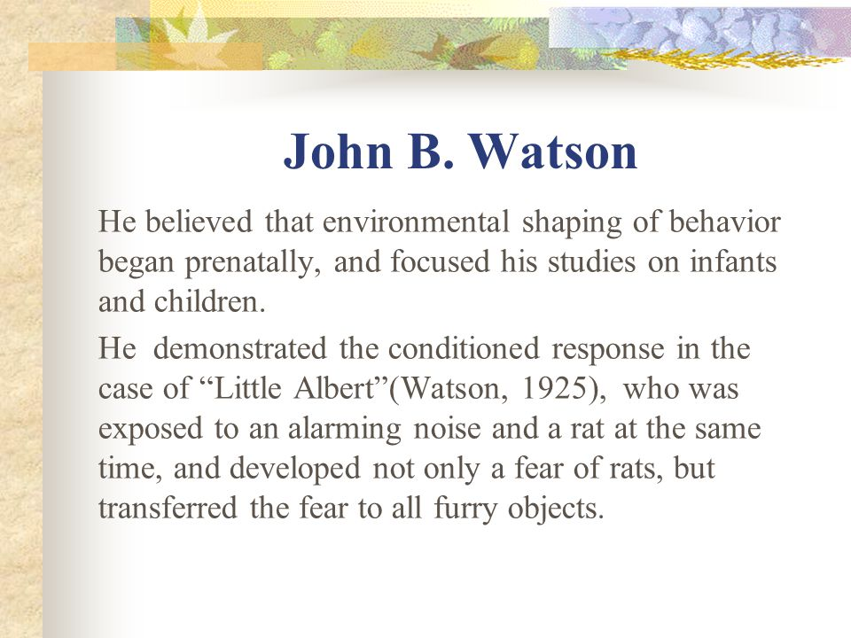 John B. Watson He believed that environmental shaping of behavior began prenatally, and focused his studies on infants and children. He demonstrated t