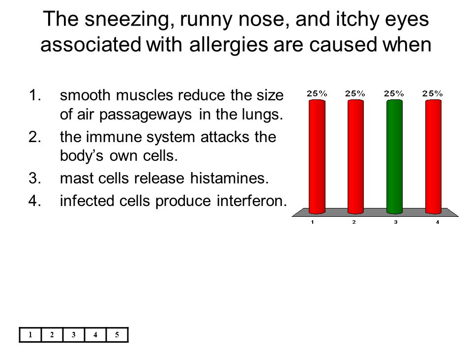 12345 The sneezing, runny nose, and itchy eyes associated with allergies are caused when 1.smooth muscles reduce the size of air passageways in the lu