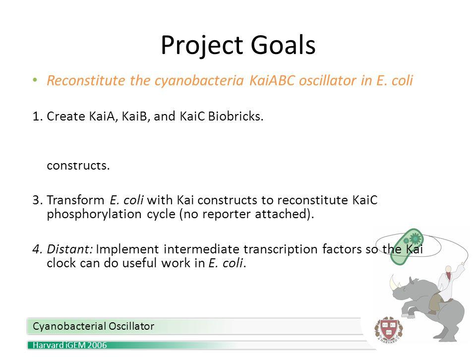 Harvard iGEM 2006 Project Goals Cyanobacterial Oscillator Reconstitute the cyanobacteria KaiABC oscillator in E.
