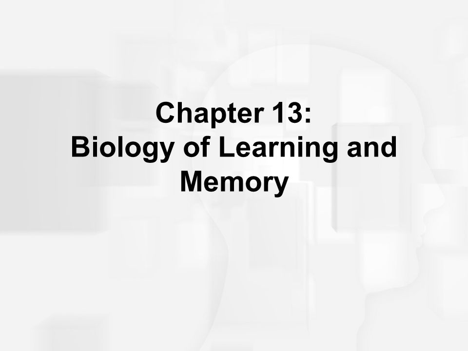 Learning, Memory, Amnesia, and Brain Functioning An early influential idea regarding localized representations of memory in the brain suggested physical changes occur when we learn something new.