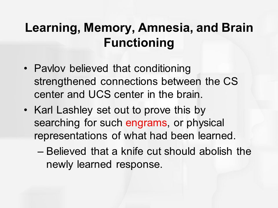 Learning, Memory, Amnesia, and Brain Functioning The delayed response task is a test of working memory which requires responding to a stimulus that one heard or saw a short while earlier.