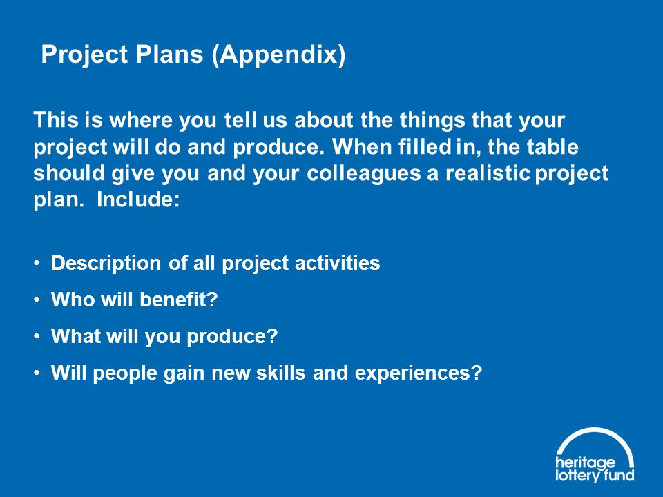 Project Plans (Appendix) This is where you tell us about the things that your project will do and produce.