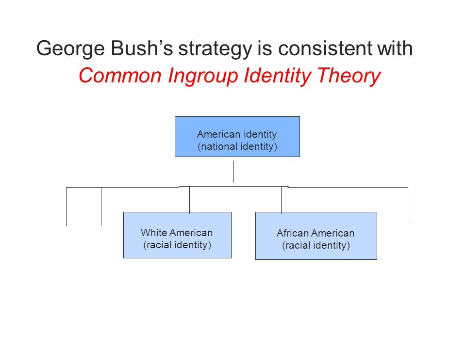 American identity (national identity) White American (racial identity) African American (racial identity) George Bush's strategy is consistent with Common Ingroup Identity Theory