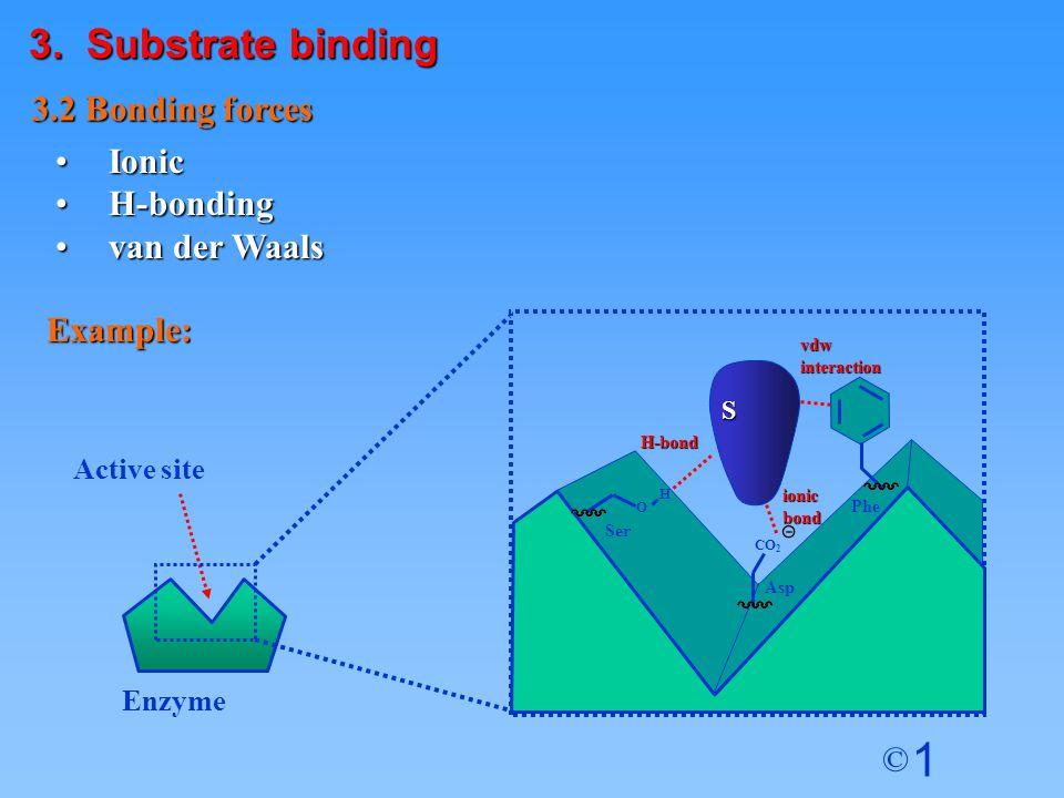 1 © IonicIonic H-bondingH-bonding van der Waalsvan der Waals 3.2 Bonding forces Example: S Enzyme Active site vdwinteraction ionicbond H-bond Phe Ser O H Asp CO 2 3.