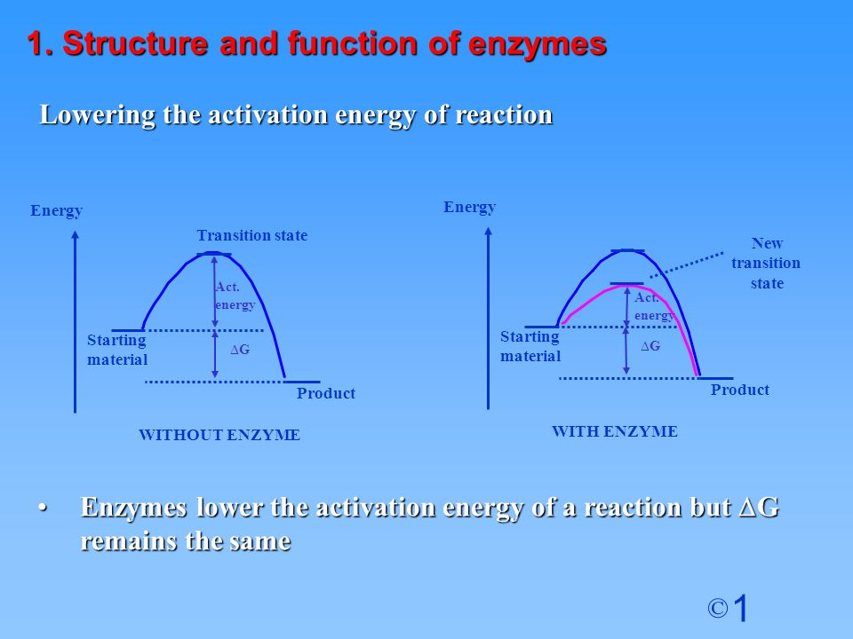 1 © Lowering the activation energy of reaction Act.