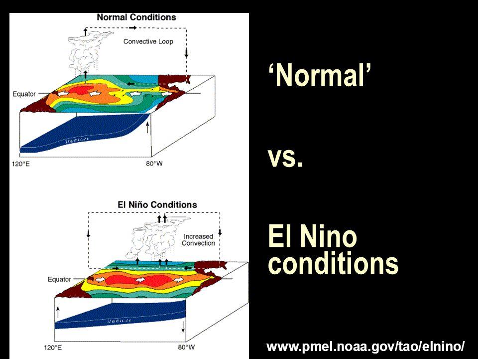 'Normal' vs. El Nino conditions www.pmel.noaa.gov/tao/elnino/