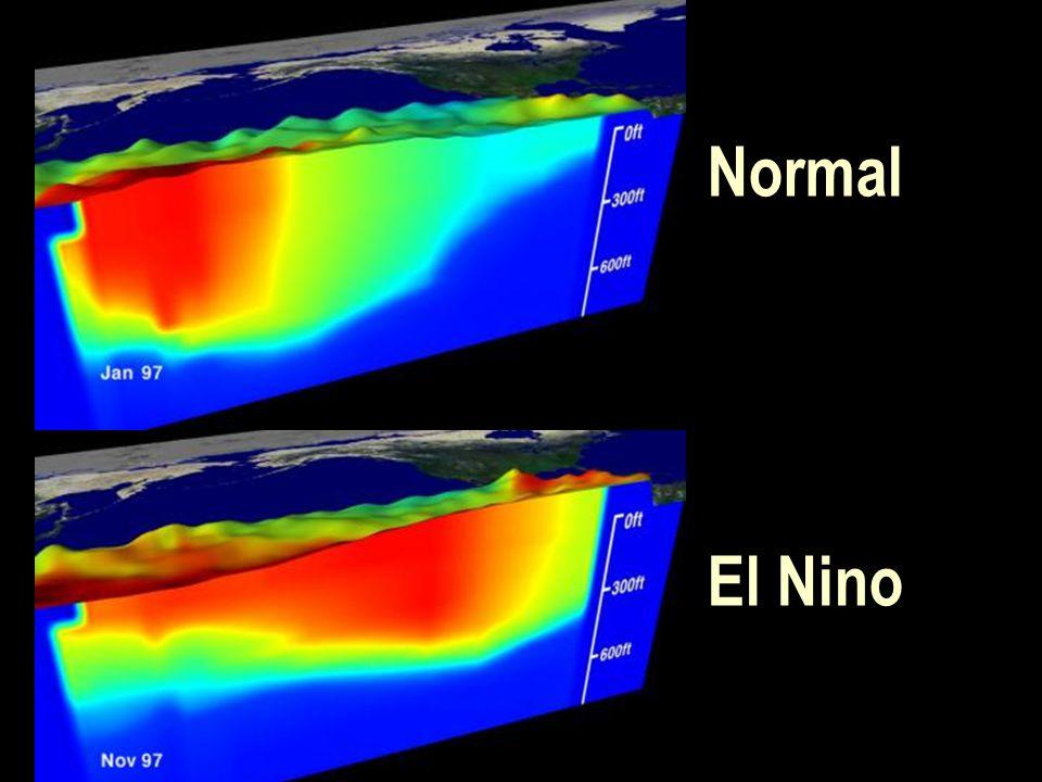 Normal El Nino