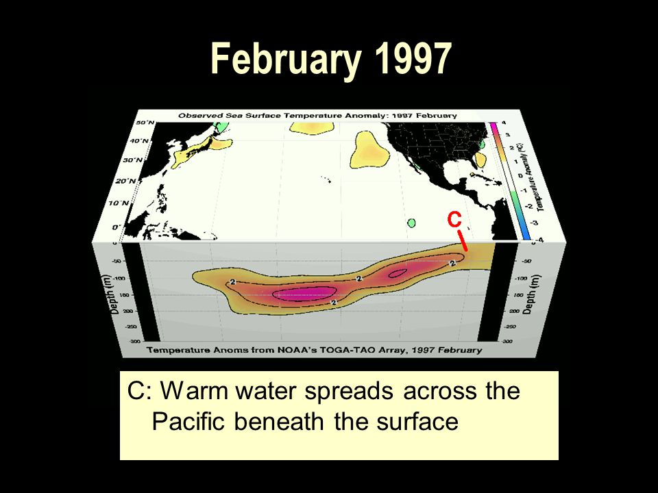February 1997 C: Warm water spreads across the Pacific beneath the surface