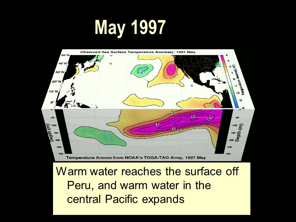 May 1997 Warm water reaches the surface off Peru, and warm water in the central Pacific expands