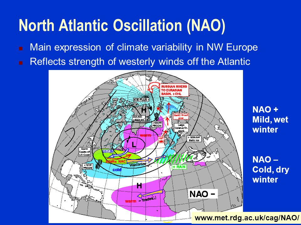 North Atlantic Oscillation (NAO) Main expression of climate variability in NW Europe Reflects strength of westerly winds off the Atlantic NAO + Mild, wet winter NAO – Cold, dry winter www.met.rdg.ac.uk/cag/NAO/