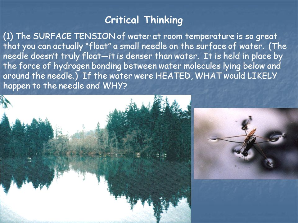 """(1) The SURFACE TENSION of water at room temperature is so great that you can actually """"float"""" a small needle on the surface of water. (The needle doe"""
