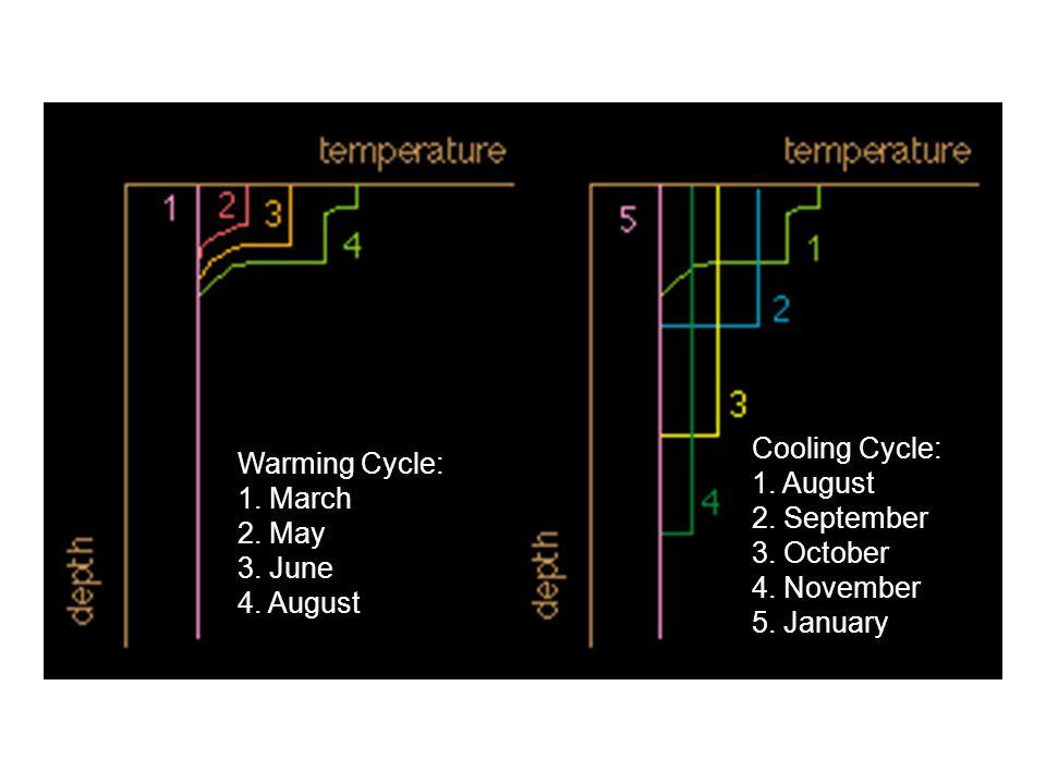 Warming Cycle: 1. March 2. May 3. June 4. August Cooling Cycle: 1. August 2. September 3. October 4. November 5. January