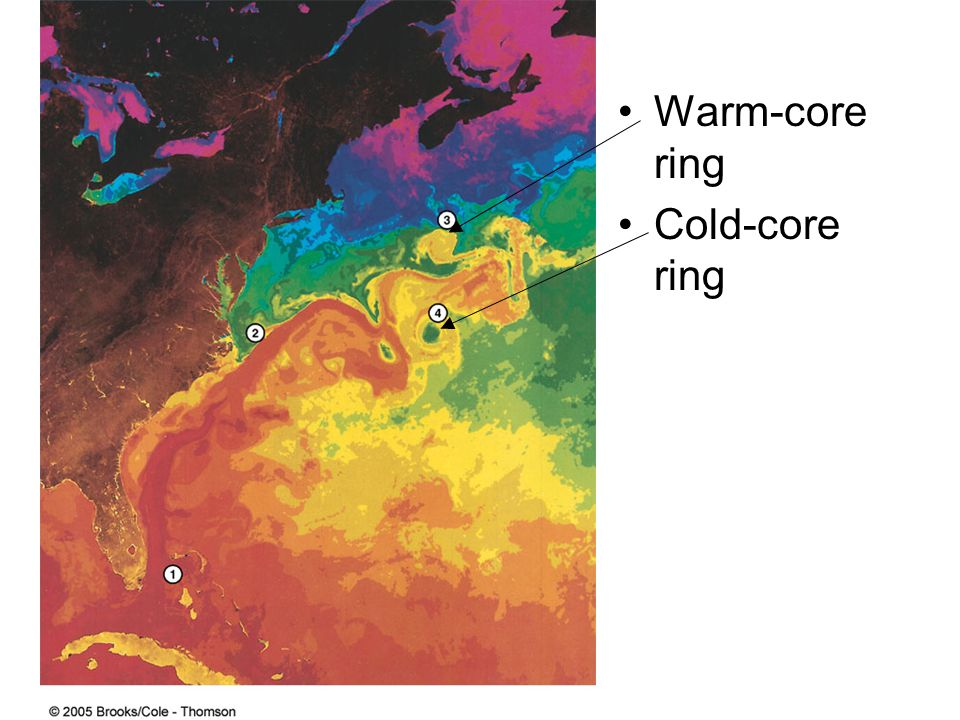 Warm-core ring Cold-core ring