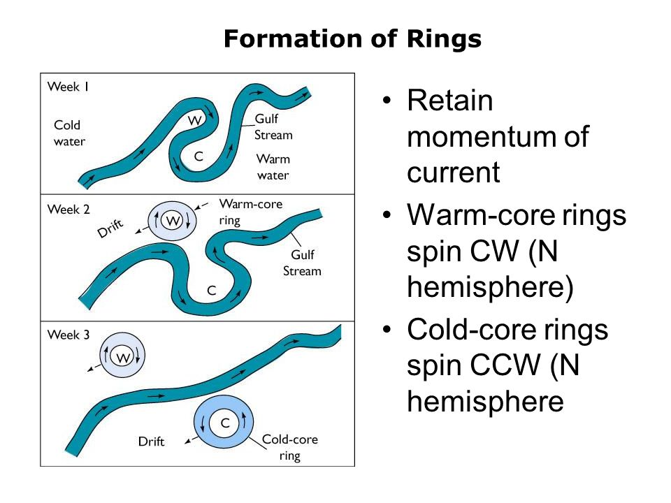 Formation of Rings Retain momentum of current Warm-core rings spin CW (N hemisphere) Cold-core rings spin CCW (N hemisphere