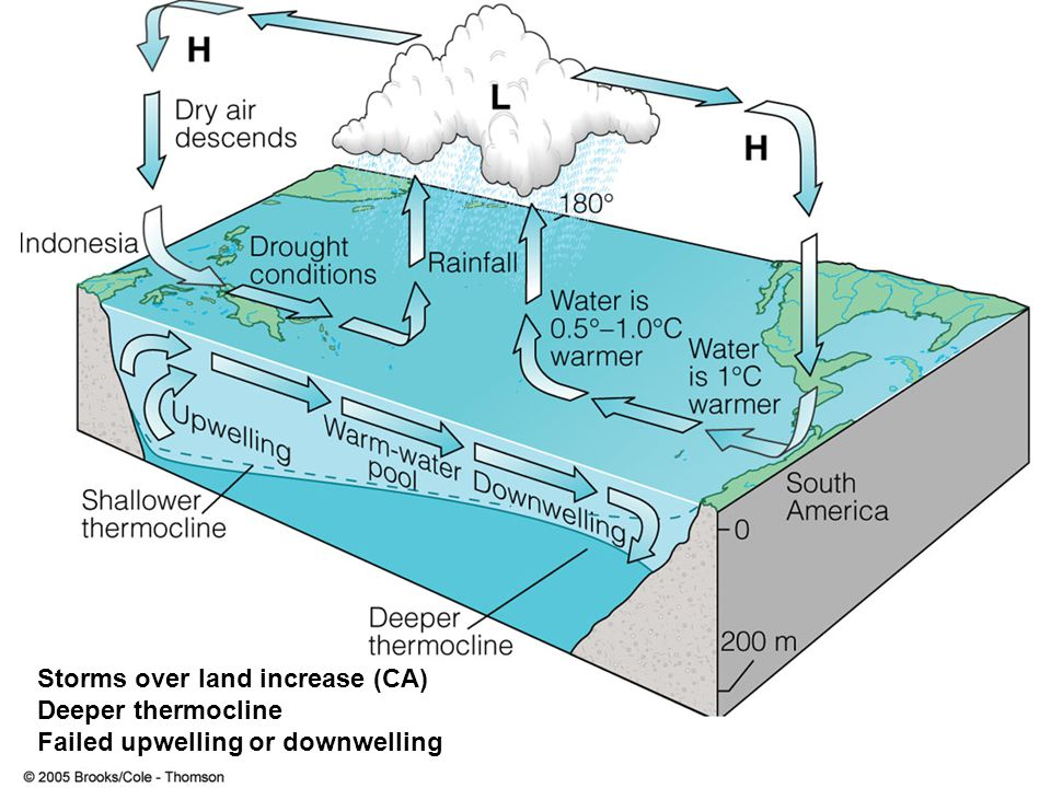 Storms over land increase (CA) Deeper thermocline Failed upwelling or downwelling