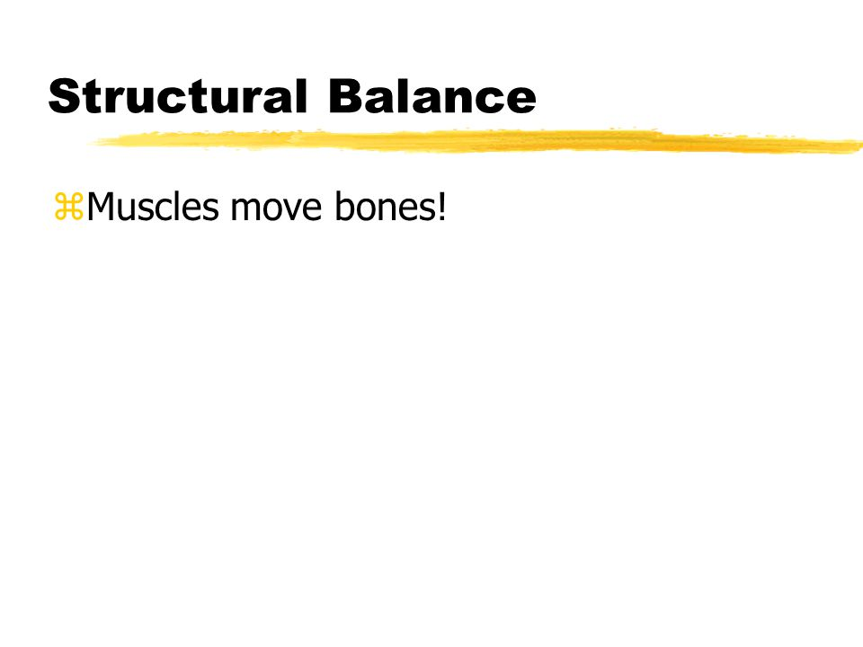 Structural Balance zMuscles move bones!