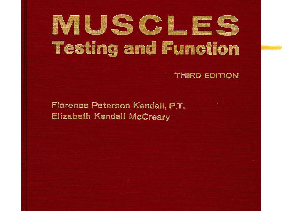 How Do I Muscle Test? zProper body part placement zProper stabilization zProper line of drive
