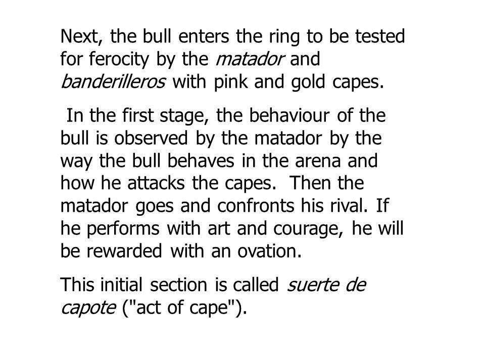 Next, the bull enters the ring to be tested for ferocity by the matador and banderilleros with pink and gold capes.