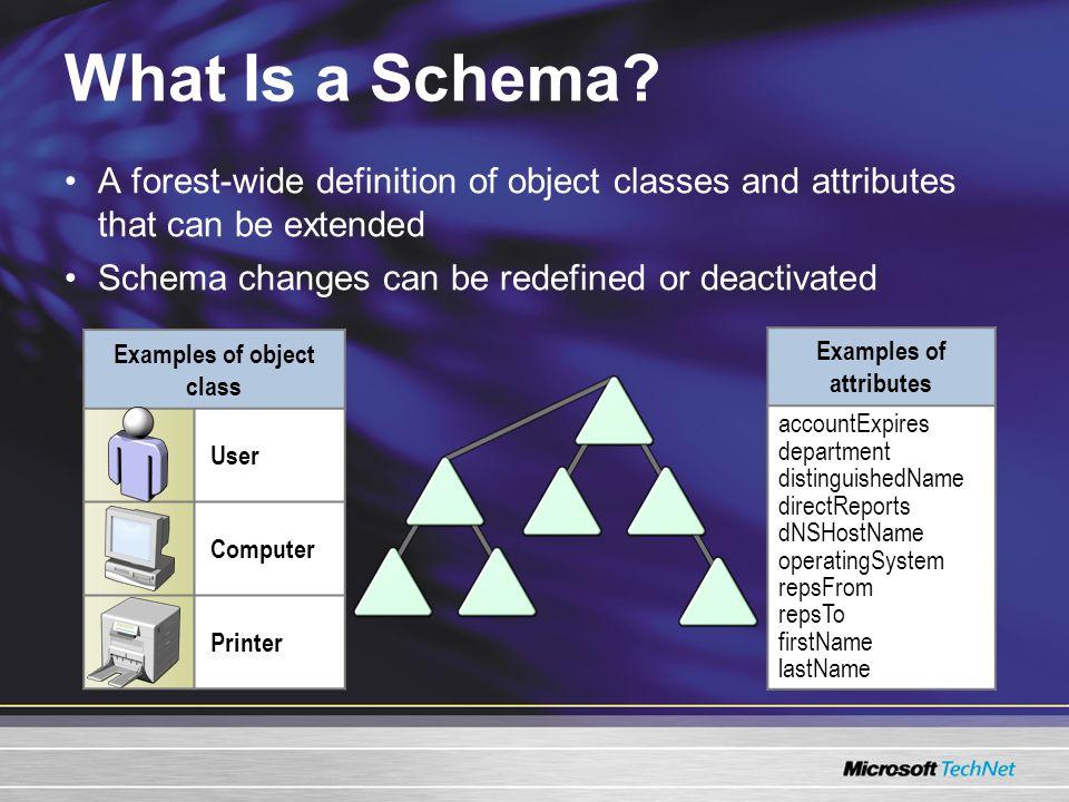 What Is a Schema.