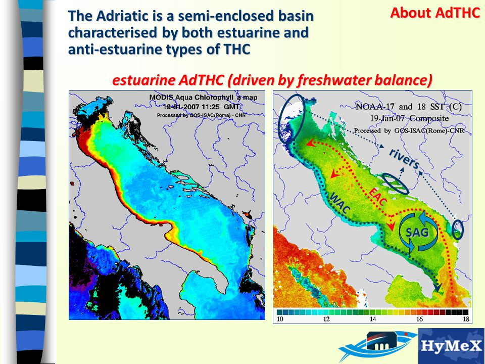 About AdTHC The Adriatic is a semi-enclosed basin characterised by both estuarine and anti-estuarine types of THC SAG EAC WAC estuarine AdTHC (driven