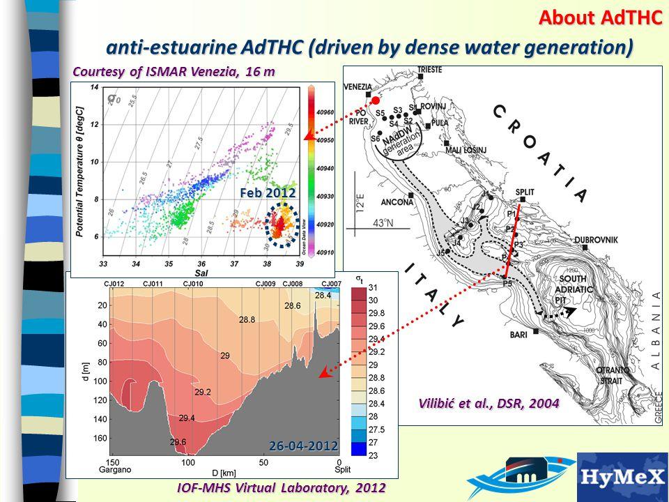 anti-estuarine AdTHC (driven by dense water generation) IOF-MHS Virtual Laboratory, 2012 Vilibić et al., DSR, 2004 26-04-2012 About AdTHC Courtesy of