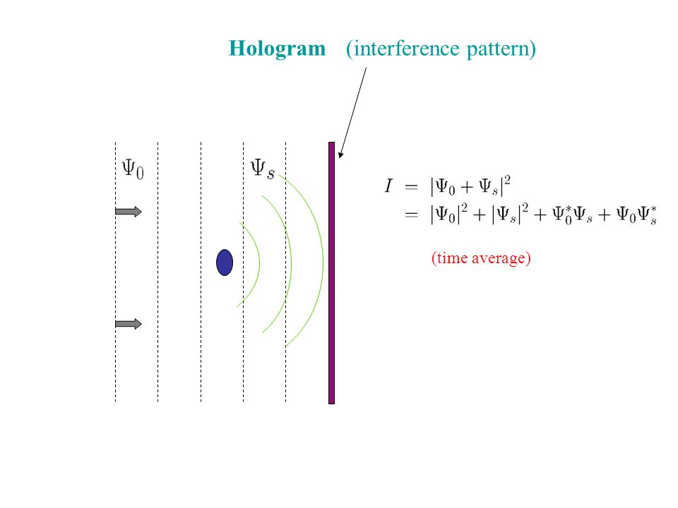 Construction of Wave Fields from Holograms Illuminate the hologram by a vertically-propagating monochromatic wave.