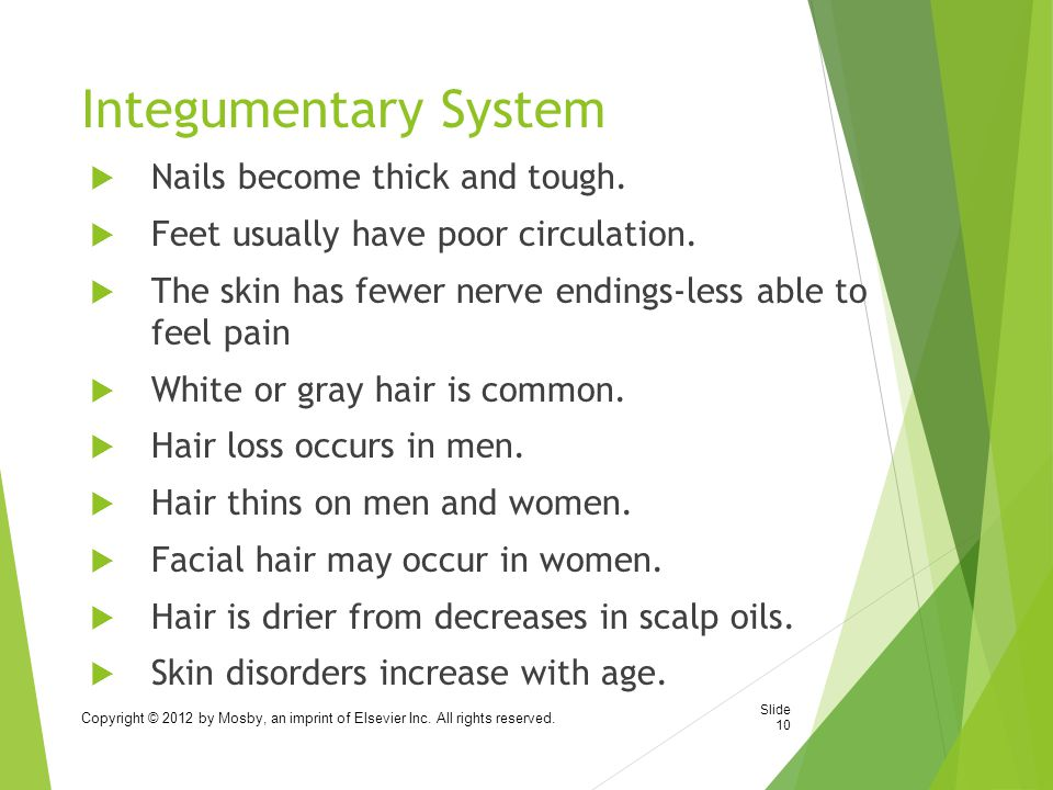 Integumentary System  Nails become thick and tough.