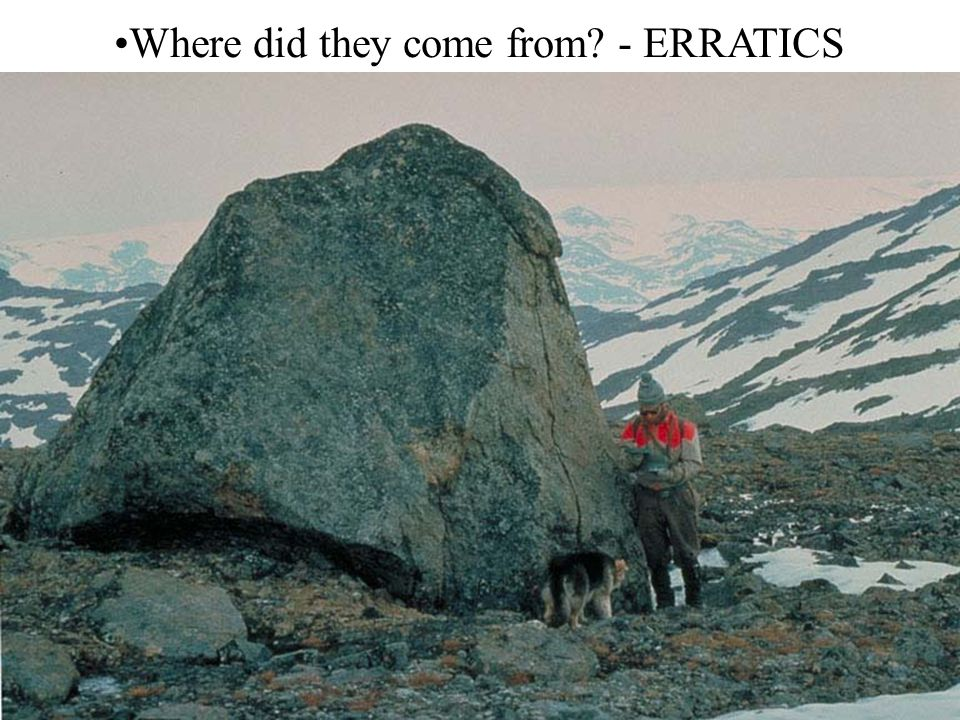 Where did they come from? - ERRATICS