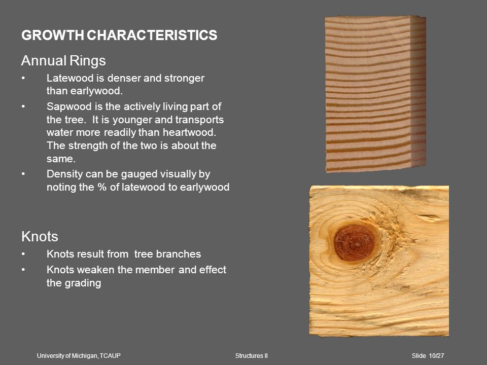 GROWTH CHARACTERISTICS Annual Rings Latewood is denser and stronger than earlywood.