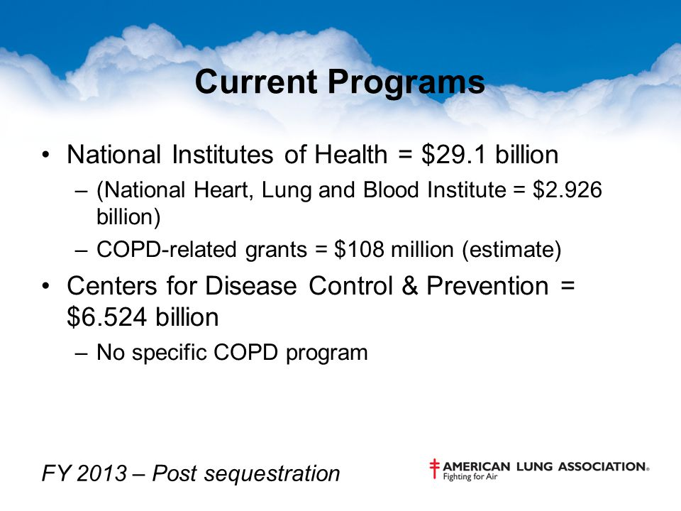Current Programs National Institutes of Health = $29.1 billion –(National Heart, Lung and Blood Institute = $2.926 billion) –COPD-related grants = $10