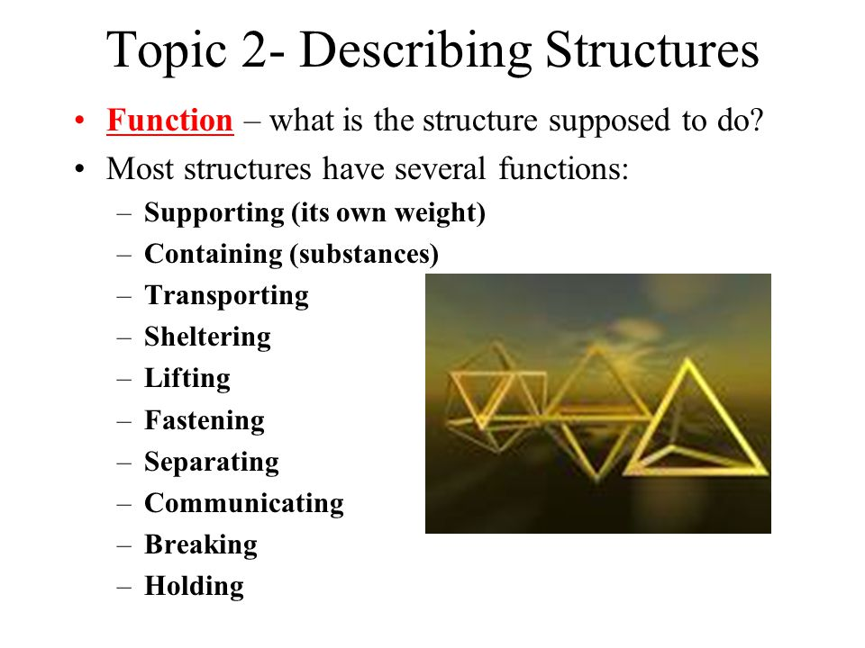 Topic 2- Describing Structures Function – what is the structure supposed to do.