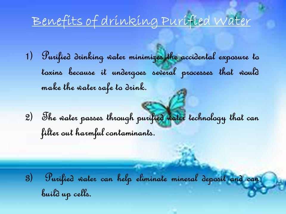 Government Should:  Bring water and sanitation into mainstreams of national and international strategies.