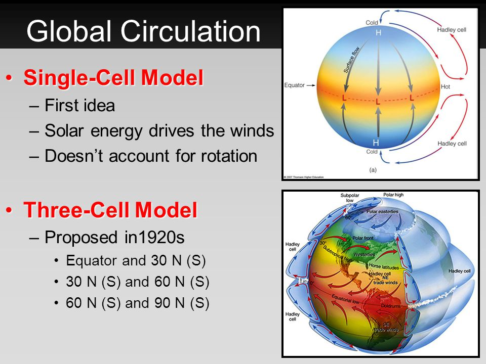 Three-Cell Model – Hadley Cell 0-30 N (S)0-30 N (S) Air rises at the equator, travels north and subsides between 25-30 N (S) (Horse Latitudes) From the center of the Horse Latitudes the surface flow splits –Trade Winds: equator-ward due to Coriolis –Westerlies: Go towards the poles Where the trade winds (N and S) meet is called the Doldrums.