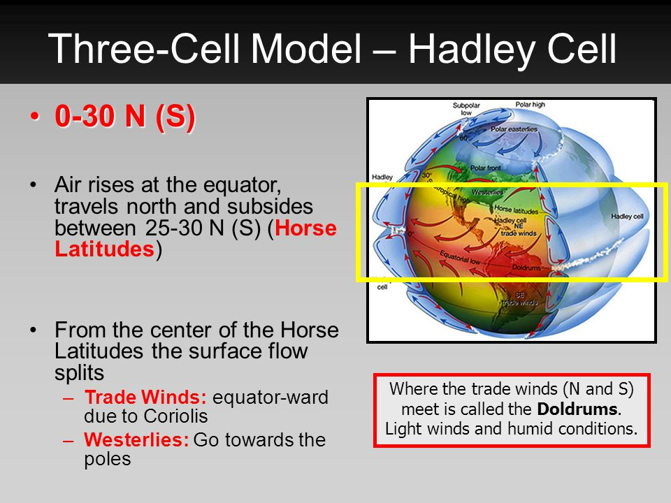 Three-Cell Model – Ferrell Cell 30-60 N (S)30-60 N (S) More complicated than the Hadley cell.