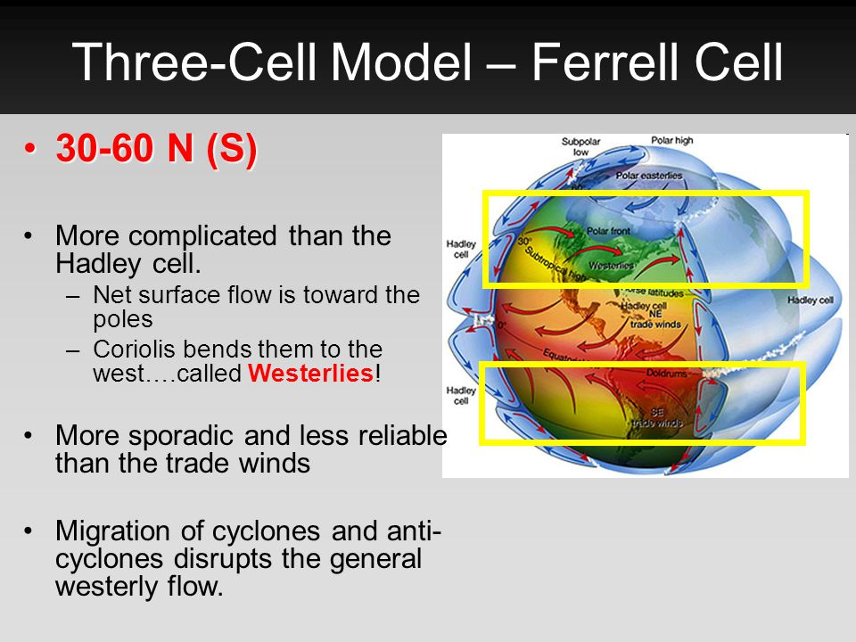 Three-Cell Model – Ferrell Cell 30-60 N (S)30-60 N (S) More complicated than the Hadley cell. –Net surface flow is toward the poles –Coriolis bends th