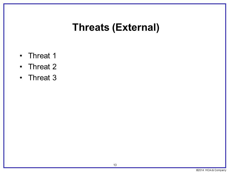 ©2014 HCIA & Company 13 Threats (External) Threat 1 Threat 2 Threat 3