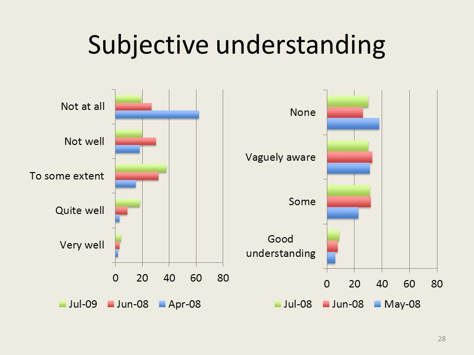 Subjective understanding 28