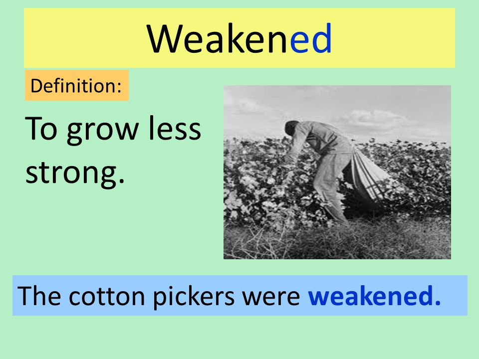 Weakened To grow less strong. Definition: The cotton pickers were weakened.