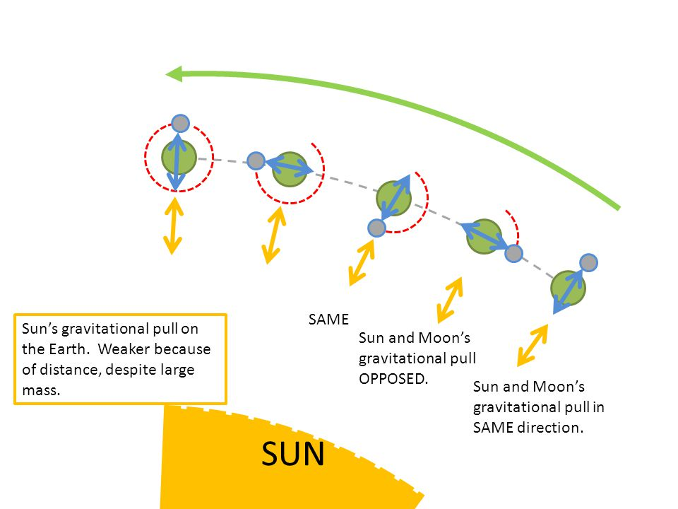 Sun's gravitational pull on the Earth.Weaker because of distance, despite large mass.