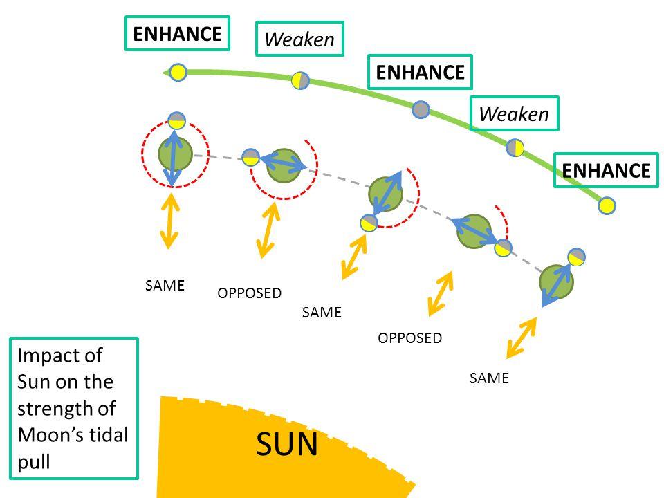 SAME OPPOSED SAME OPPOSED Impact of Sun on the strength of Moon's tidal pull Weaken ENHANCE Weaken
