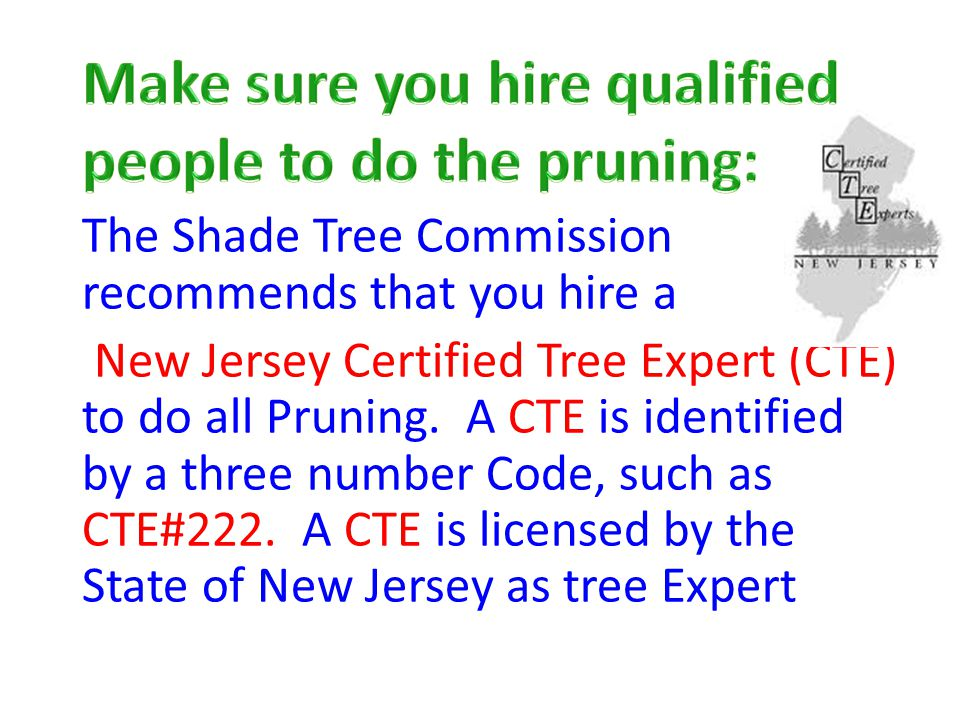 The Shade Tree Commission recommends that you hire a New Jersey Certified Tree Expert (CTE) to do all Pruning.