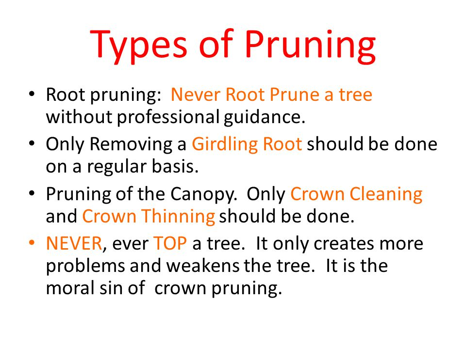 Types of Pruning Root pruning: Never Root Prune a tree without professional guidance.