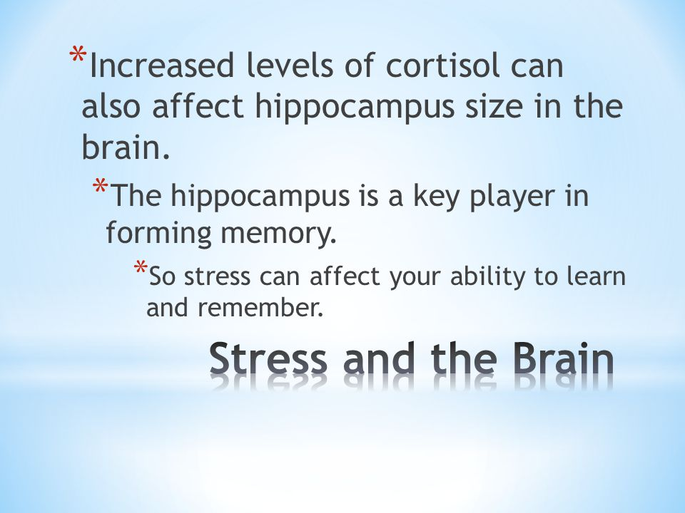 * Increased levels of cortisol can also affect hippocampus size in the brain. * The hippocampus is a key player in forming memory. * So stress can aff