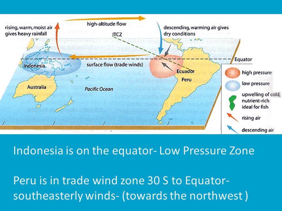 Indonesia is on the equator- Low Pressure Zone Peru is in trade wind zone 30 S to Equator- southeasterly winds- (towards the northwest )