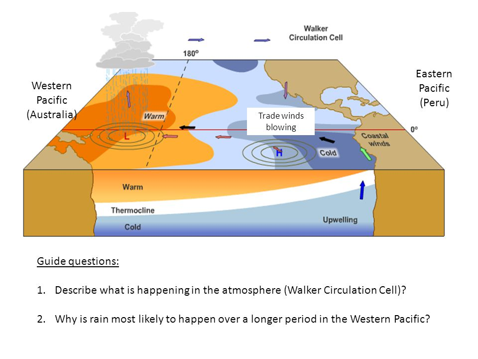 Guide questions: 1.Describe what is happening in the atmosphere (Walker Circulation Cell).
