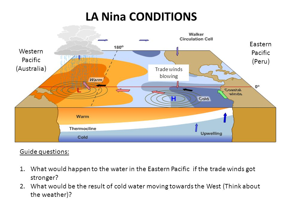 LA Nina CONDITIONS Western Pacific (Australia) Eastern Pacific (Peru) Guide questions: 1.What would happen to the water in the Eastern Pacific if the trade winds got stronger.